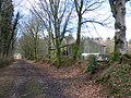 Bridleway, at Forest Glade - geograph.org.uk - 1776036.jpg