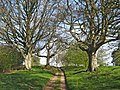 Bridleway at Gothelney Hall - geograph.org.uk - 1236699.jpg