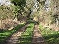 Bridleway to Bear Mead - geograph.org.uk - 1195447.jpg