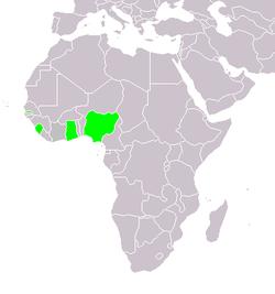 Localização da África Ocidental Britânica.  Da esquerda para a direita: Gâmbia, Serra Leoa, Costa do Ouro e Nigéria.