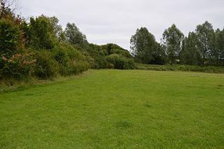 Brockwell Meadows