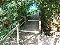 Buncton Chapel path.JPG