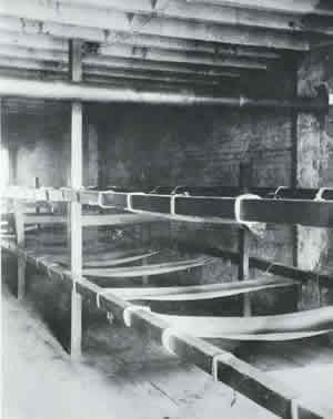 Flophouse - Bunks in a Seven Cent Lodging House, c. 1890