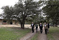 Bush-ranch-walk.jpg