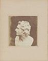 Bust of Patroclus MET DP147246.jpg