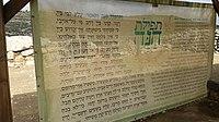 By Ovedc Elef-Milim in Tel Shilo 47.jpg