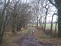 Byway to the A2070 - geograph.org.uk - 1720882.jpg