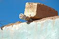 CFL under a brick (3166910180).jpg