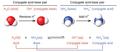 CNX Chem 14 01 conjugate img.png