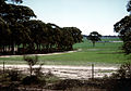 CSIRO ScienceImage 620 A paddock containing native remnant vegetation to promote biodiversity.jpg