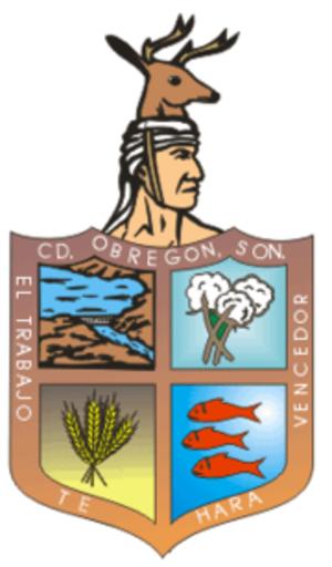Ciudad Obregón - Image: Cajeme