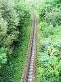 Calea ferata Musenita.jpg