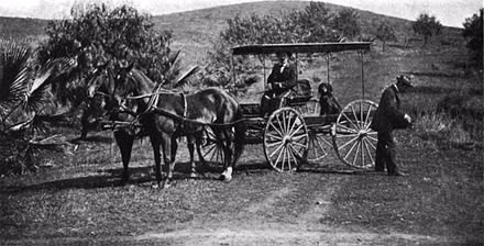 This 1896 photo, taken in Riverside County, shows Bureau of Highways commissioners R. C. Irvine in buckboard, J. L. Maude with camera, and Maje, Mr. Irvine's Gordon setter.