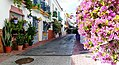 Calle San Miguel with pink flowers - Estepona Garden of the Costa del Sol.jpg