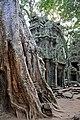 Cambodia-2566 (3610360349).jpg