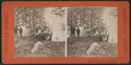 Camp Life in the Adirondacks, from Robert N. Dennis collection of stereoscopic views.png