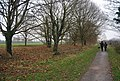 Canalside path and trees - geograph.org.uk - 1110823.jpg