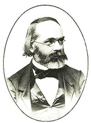 Carl Nägeli - Image: Carl Wilhelm von Naegeli