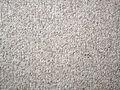 Carpet pattern.jpg