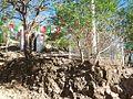 Casimiro Castillo, Jal., Mexico - panoramio.jpg