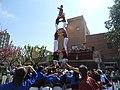 Castellers de Castellar del Vallès - 25è Aniversari de Badia del Vallès - 46888323534.jpg