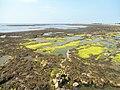 Castletown - panoramio (2).jpg