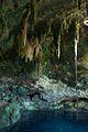 Cenote Chan Sinic Che2.jpg