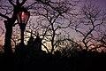 Central Park at dusk (3289085093).jpg