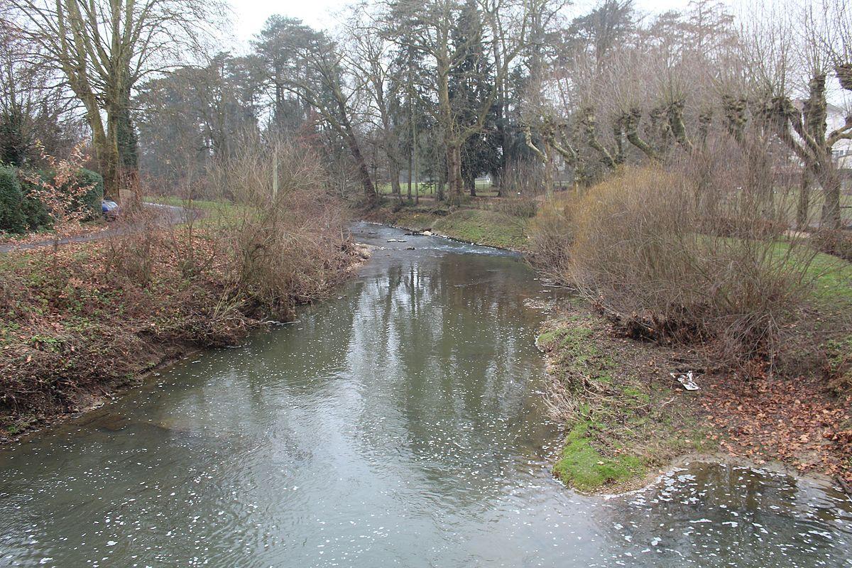 Chalaronne wikip dia for Imagenes de estanques para ninos