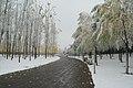 Chaoyang, Beijing, China - panoramio (38).jpg