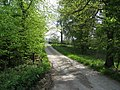 Chatsworth Estate - Track to Park Farm - geograph.org.uk - 798417.jpg