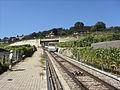 Chemin de fer funiculaire Vevey–Mont Pèlerin - 2010-08-09 - 18.jpg