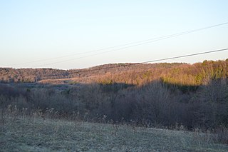 Ferguson Township, Clearfield County, Pennsylvania Township in Pennsylvania, United States