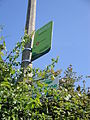Chillerton Green bus stop flags in June 2011.JPG