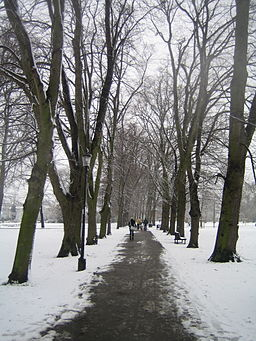 Christ's Pieces snowy path