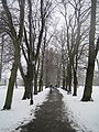 Christ's Pieces snowy path.JPG