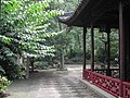 Classical Gardens of Suzhou-111923.jpg