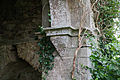 Cloonshanville Priory Tower SW Corbel 2014 08 29.jpg