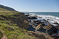 Coastline Looking South - Harmony Headlands State Park.jpg