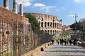 Coliseo 2013 014.jpg