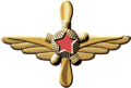 Collar insignia of Aviation Engineering Service.png