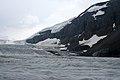 Columbia Icefield (349051125).jpg