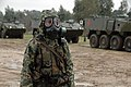 Combined Joint Offensive Operation & CAF High Vis Day, Portugal, NATO Trident Juncture 15 (22155127853).jpg