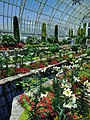 Como Park Zoo and Conservatory - 49.jpg