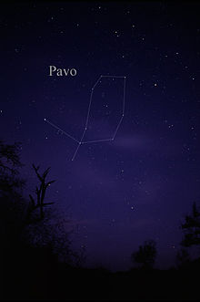 Constellation Pavo.jpg