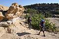 Continental Divide National Scenic Trail, La Leña WSA NM.jpg