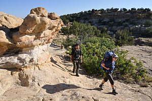 Continental Divide Trail - Continental Divide Trail in the La Leña Wilderness Study Area, near San Ysidro, New Mexico