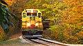 Conway Scenic Railway, Arethusa Falls Trail, Hart's Location - panoramio.jpg