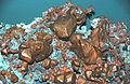 Copper crystals (Mesoproterozoic, 1.05-1.06 Ga; Franklin Jr. Mine, Hancock, Upper Peninsula of Michigan, USA) (17106343547).jpg