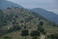Corse, Parc naturel régional de Corse, vallée du Rizzanese, Sorbollano, le Ranch.JPG